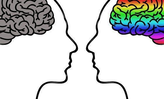 Men and women have different brains