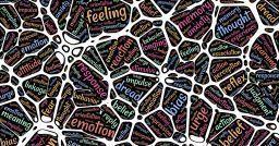 Neuroni specchio: per imparare abbiamo bisogno di interagire?