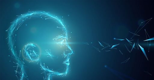 Artificial Intelligence: ethical-legal principles