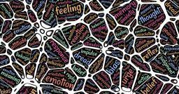 Mental Patterns: How Do They Affect Student Results?