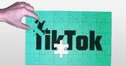 <!-- NO-IMPORT-IN-DD -->E-learning in the time of Tik Tok